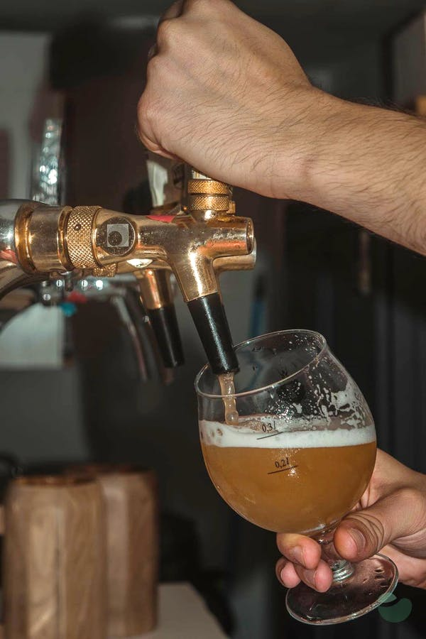 Zadar craft beer tasting private tour