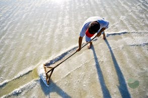 Solana Nin (Nin Saltworks): Become a Saltworker for a day