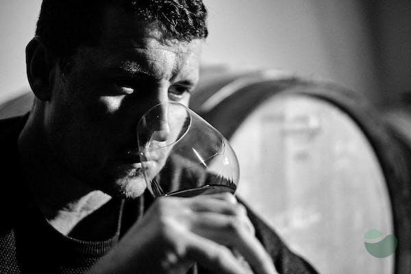 Baraka Winery near Šibenik: Riserva Tasting