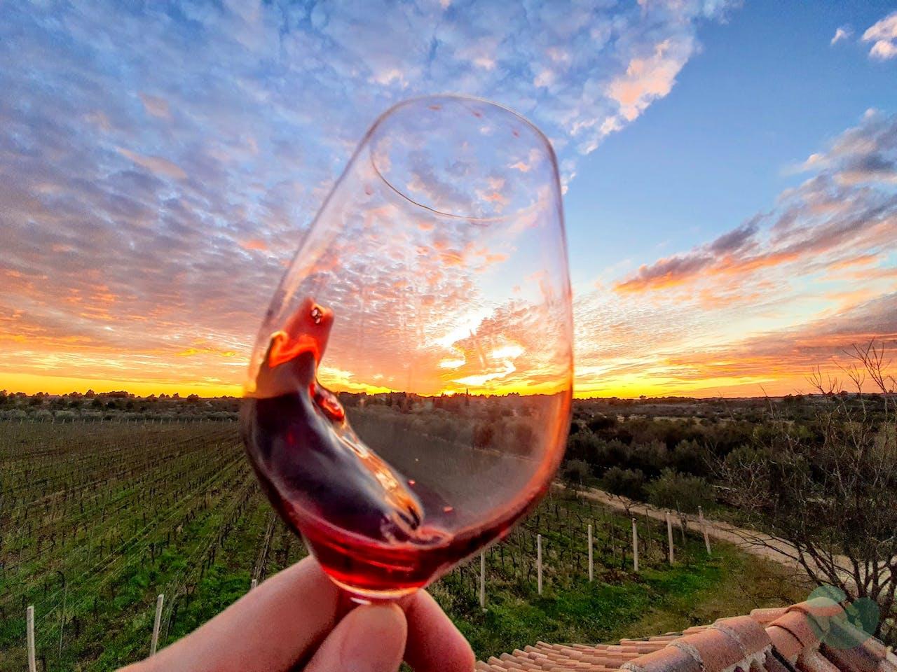 Baraka Winery near Šibenik: Terroir Tales